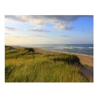 Jefe de la playa Truro Cape Cod del prado Postal