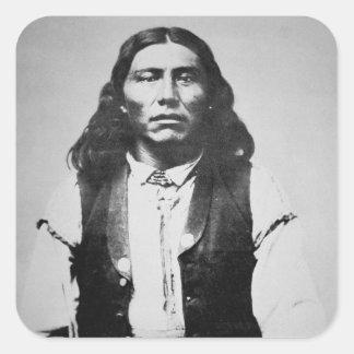 Jefe de Naiche d 1874 de los apaches de Chiricah Etiquetas