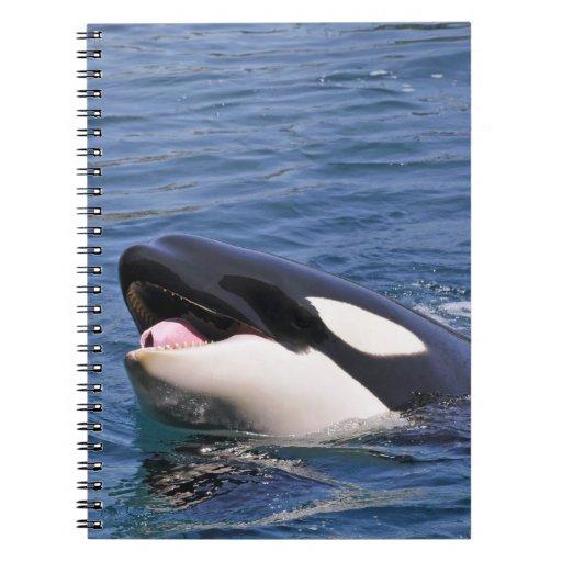 Jefe del asesino de la ballena spiral notebooks