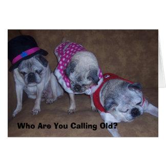Jeff, Gina, Grandpa, Who Are You Call... Greeting Card