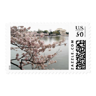 Jefferson Memorial from a Distance Postage