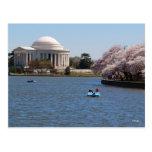 Jefferson Memorial Washington DC Postcard
