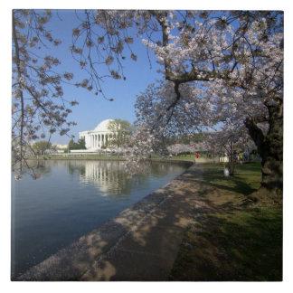 Jefferson Memorial, Washington DC Tile