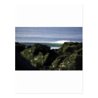 Jeffrey's Bay surfing wave South Africa Postcard