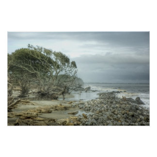 Jekyll Island Beach Poster