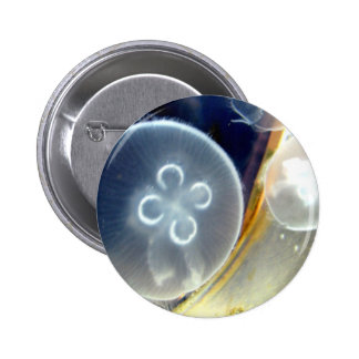 Jellies Pinback Button