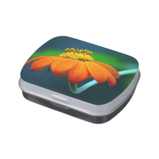 Jelly Belly™ Rectangle Candy Tin with Flower Photo