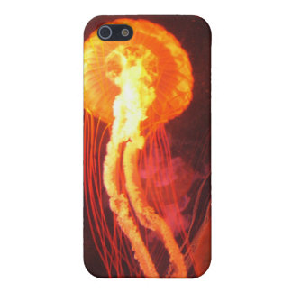 Jelly Fish 4 iPhone 5 Cases