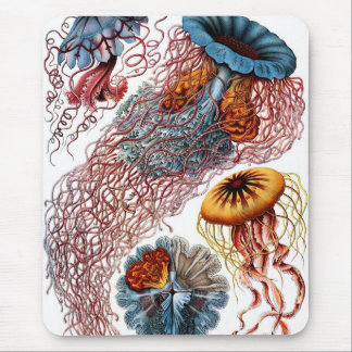 Jelly Fish by Ernst Haeckel Mouse Pad