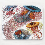 Jelly Fish by Ernst Haeckel Mousepads