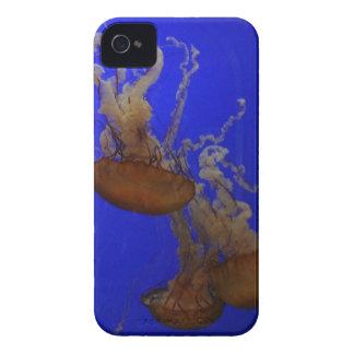 Jelly Fish Case