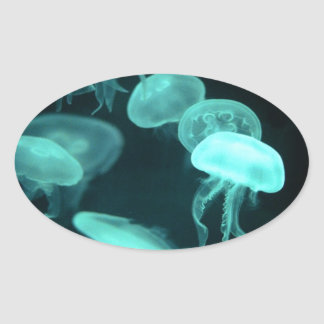 jelly fish glowing oval sticker