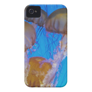 Jelly Fish iPhone 4 Cover