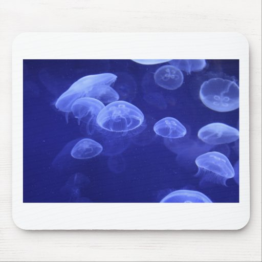 jelly fish mouse pads