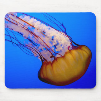 Jelly Fish Mouse Pad