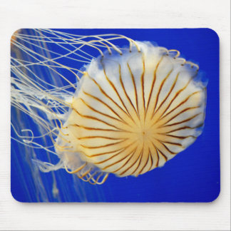 Jelly Fish Photo Print Mouse Pad
