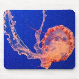 jelly mouse pad