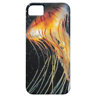 """Jelly"" photo print iPhone SE/5/5s Case"
