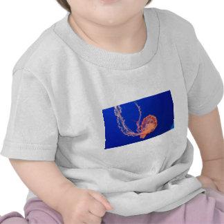 jelly t-shirts