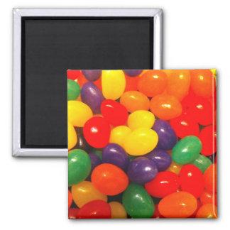 Jellybean Magnet
