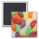 Jellybeans Magnet