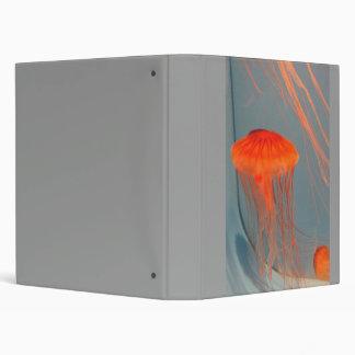 JellyFish2-1 Binder