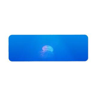 jellyfish-698521 SEA CREATURES ANIMALS BLUE OCEAN Label