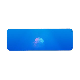 jellyfish-698521 SEA CREATURES ANIMALS BLUE OCEAN Return Address Label