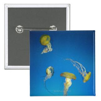 Jellyfish Pins