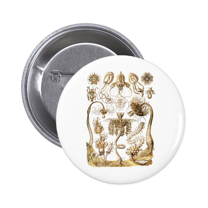 Jellyfish Button
