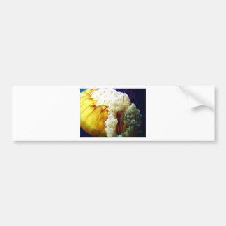 Jellyfish - by Billy Kakuki Bumper Sticker