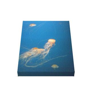 JellyFish Canvas Art