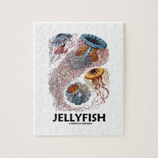 Jellyfish (Ernest Haeckel's Artforms Of Nature) Jigsaw Puzzle