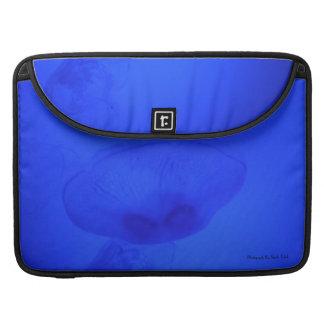 Jellyfish Fine Graphic Sleeve