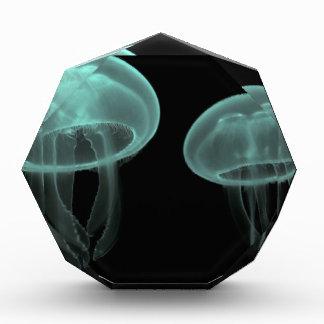 jellyfish fish custom personalize Anniversaries Award