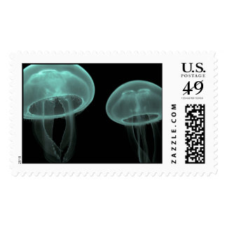 jellyfish fish custom personalize Anniversaries Postage