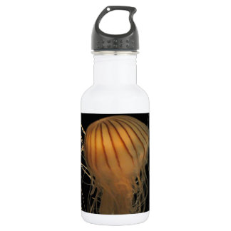 Jellyfish Greetings! Water Bottle