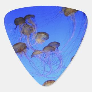 jellyfish guitar pick
