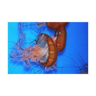 Jellyfish in an Aquarium Canvas Print