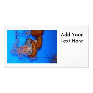 Jellyfish in an Aquarium Custom Photo Card