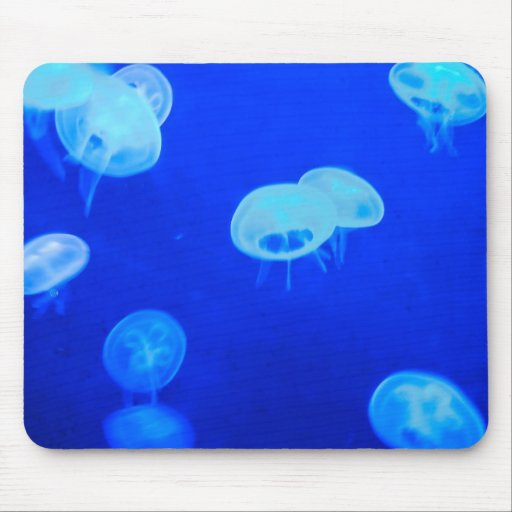 jellyfish into blue mouse pad