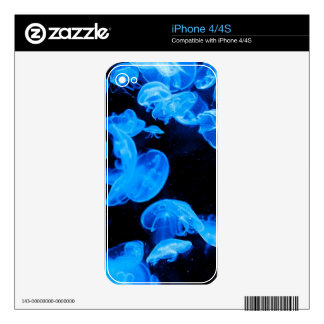 Jellyfish iPhone 4 Decal