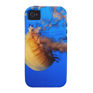 Jellyfish iPhone Case iPhone 4 Cases