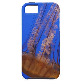 Jellyfish iPhone iPhone SE/5/5s Case