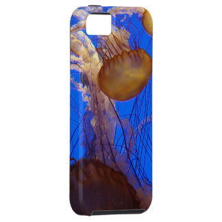 Jellyfish iPhone SE/5/5s Case