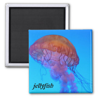 Jellyfish 2 Inch Square Magnet