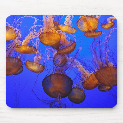 Jellyfish Mess Mouse Pad