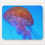 Jellyfish Mousepads