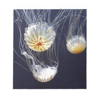 Jellyfish Notepad