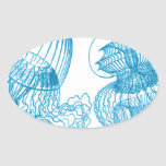 Jellyfish Oval Sticker